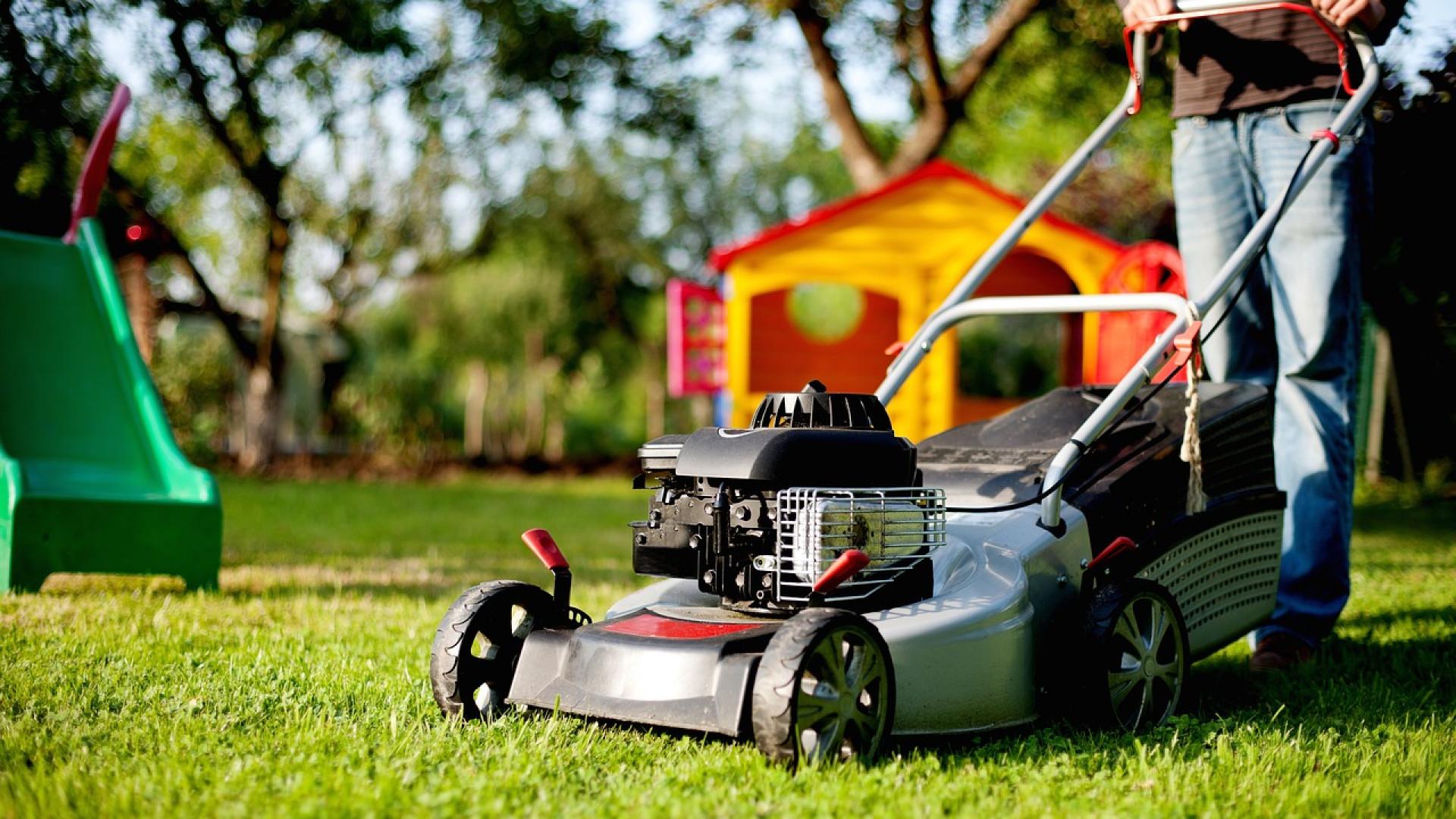 Où trouver des équipements de jardin au meilleur prix ?